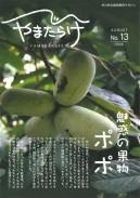 No.13幻の果物ポポ